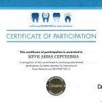 сертификат о прохождении практики Крук А.С.