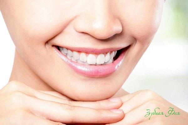 особенности строения зубов
